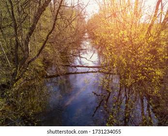 Gatchina Park Teplaya River Pudost