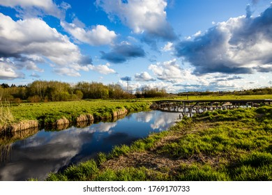 Gatchina suburbs and Izora river