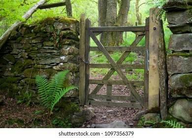 Gate in Bigland Woods, Cumbria Coastal Way, Lake District, Cumbria, UK, May 2018