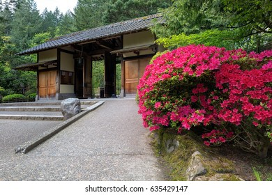 Gate Entrance at Portland Japanese Garden with blooming Azaleas in Spring
