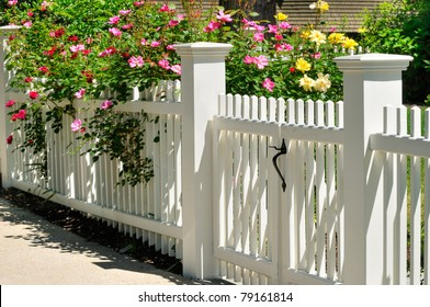 Gate, fence and climbing roses. Colorful spring background, home entrance, curb appeal