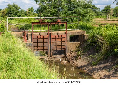 The gate separates the drainage canal for agriculture.