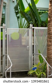 Gated door to an apartment building with tropical palm trees