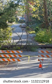 A gated off road is blocked by warning signs where a storm has caused a large tree and utility wires to fall across a neighborhood road blocking access and presenting a danger to travelers