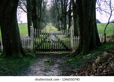 Gates to the avenue to nowhere