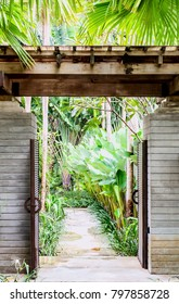 gates to tropical forest