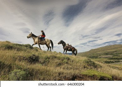 Gauchos at work, Torres del Paine National Park, Patagonia, Chile
