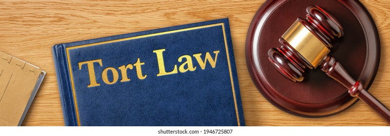 A gavel with a law book - Tort Law