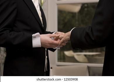 A gay couple exchanging rings at their civil partnership.