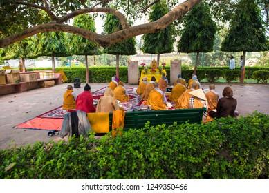 Gaya / India 12 November 2018 A Buddhist monks sitting under the bodhi tree at Mahabodhi temple in Bodh Gaya in Bihar northeast India