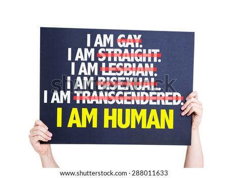 Gay lesbian bisexual straight human