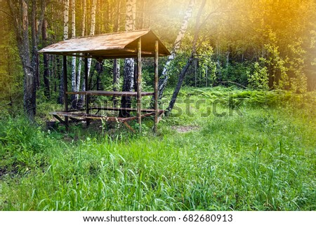 Pleasing Gazebo Forest Canopy Wooden Table Benches Stock Photo Edit Ibusinesslaw Wood Chair Design Ideas Ibusinesslaworg