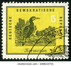 GDR - CIRCA 1959: post stamp printed in Germany (DDR; Deutschland) shows great cormorant sitting on branch, protection of native birds; Scott 444 A146 5pf yellow, circa 1959