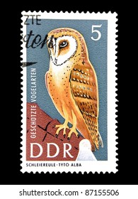 """GDR - CIRCA 1967: A Stamp printed in GDR (East Germany) shows the image of a bird - Barn Owl with the inscription """"Tyto Alba"""" from the series """"Protected birds"""", circa 1967"""