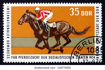 GDR - CIRCA 1974: a stamp printed in GDR shows British Thoroughbred Race Horse, International Horse Breeders'?? of Socialist Countries, Berlin, circa 1974