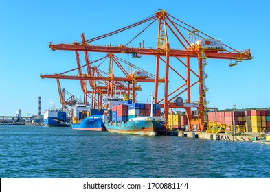 GDYNIA , POLAND 24 SEPTEMBER 2018 : Baltic Container Terminal in Gdynia port.