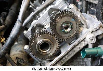 Gear wheels installed in the engine. Gear wheels meshing.