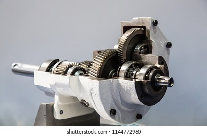 Gear wheels of reducer motor. Section view