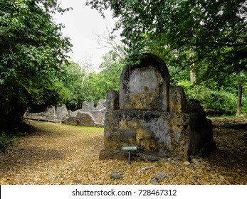 Gede (Gedi) ancient city ruins. Malindi region. Kenya. East Africa