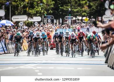 GEELONG, AUSTRALIA - JANUARY 27: Elia VIVIANI (ITA) of DECEUNINCK - QUICK STEP (DQT) wins the 2019 Cadel Evans Great Ocean Road Elite Mens Race