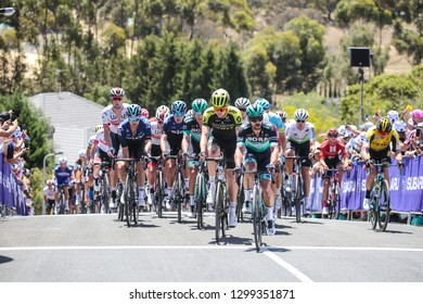 GEELONG, AUSTRALIA - JANUARY 27: Riders compete in the 2019 Cadel Evans Great Ocean Road Elite Mens Race