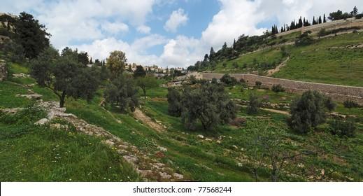Gehenna (Hinnom) Valley near the Old City in Jerusalem