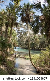 Gemini Springs park in Florida.