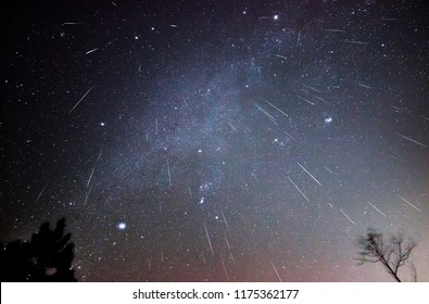 Geminid meteors shower downward in this composite image taken over several hours on a December night in a remote part of Virginia. Constellations: Gemini, Auriga, Taurus, Orion, Canis Major and Minor.