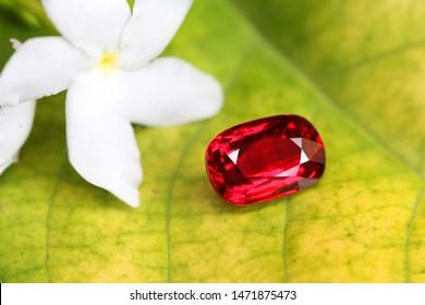 Gemstone amazing beauty shot RED Gemstone