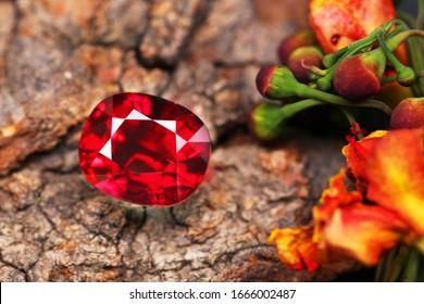 Gemstone Red RUBY Gem Beauty Shot
