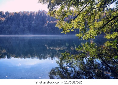 Gemunder Maar volcanic lake in the Eifel near Daun, Germany. Picturesque reflection of trees in the water.
