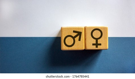 Gender equality concept. Wood cubes with male equals female symbol on white and blue background. Copy space.