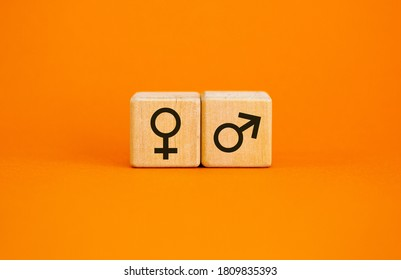 Gender equality concept. Wood cubes with male equals female symbol on beautiful orange background. Copy space.