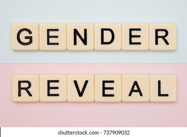 Gender Reveal on a Blue and Pink Background