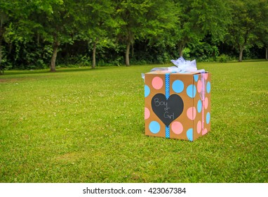 Gender Reveal Party Box: A  Gender Reveal party box full of balloons the color of which represents the gender of the baby to be.  Focus on the box.