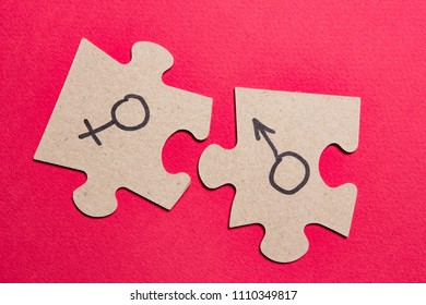 Gender signs of man and woman on puzzles. Sexual concept with the sex characteristics of men and women