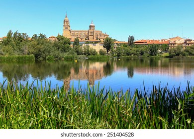 general view of the Cathedral of Salamanca, Spain