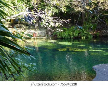 General view of cenote near Chichen Itza in Mexico
