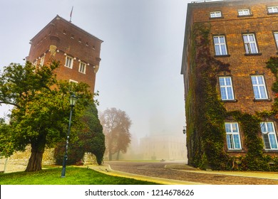 General view of Wawel Castle in misty morning. Residency located in central Kraków, Poland. For centuries residence of kings and the symbol of Polish statehood.