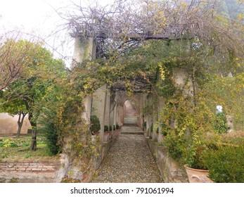 Generalife of Alhambra palace