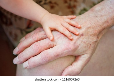generations little babies hand on a retiree hand