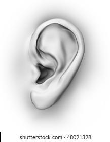 Generic detailed ear