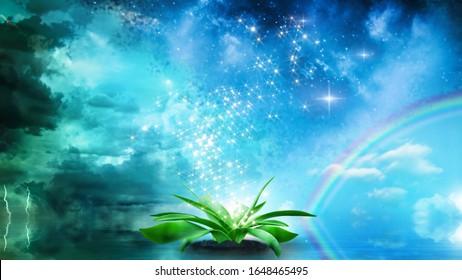 Entstehung des Lebens und Beginn der Evolutionskonzeption