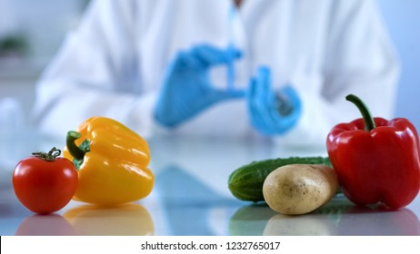 Genetic breeding of vegetables in lab, biology scientist analyzing food quality