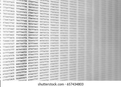 Genetic code, DNA sequencing displayed on a computer screen