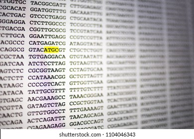 Genetic DNA code as displayed on a computer screen