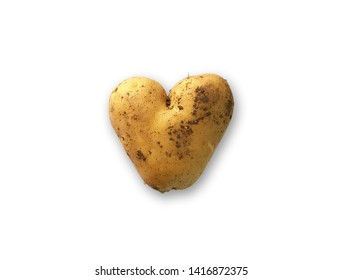 Genetically modified food, heart shaped potato in the middle. White background with space for text. Production of modern farming and genetic engineering.