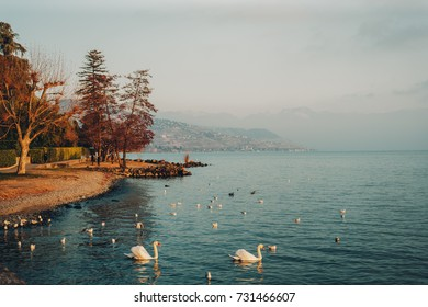 Geneva lake in wintertime, image taken in Lausanne, Switzerland