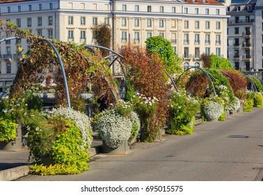 Geneva, Switzerland, 24 September, 2016: plants on Pont des Bergues bridge. Pont des Bergues is a bridge over the Rhone river in the city of Geneva, Switzerland.