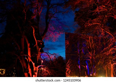 Geneva / Switzerland - november 30, 2009 : during the month of December the trees receive luminous ornaments created by artists